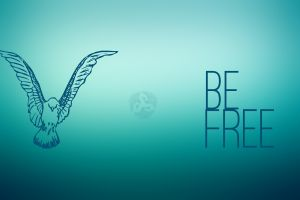colibri (bird) gradient free typography birds turquoise freedom