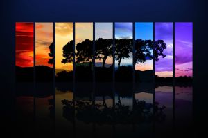 colorful collage trees