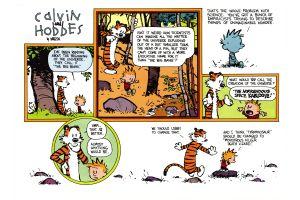 comics cartoon calvin and hobbes