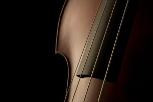 contrabass musical instrument simple background