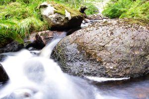 creeks nature summer rocks long exposure