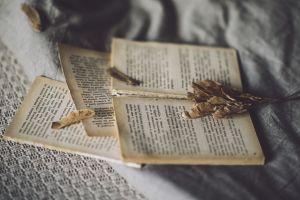 depth of field cloth books