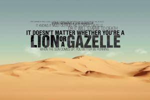 desert quote lion