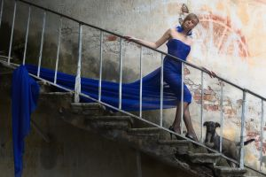 dog model stairs women blue dress