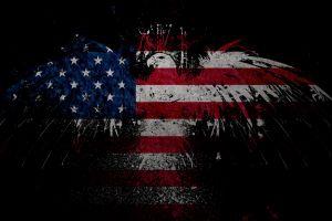 eagle flag grunge usa