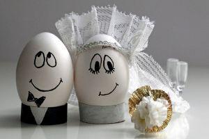 eggs humor smiling
