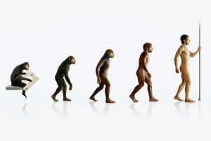 evolution white background digital art humor simple background
