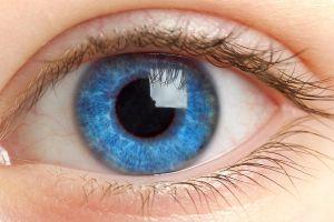 eyelashes blue eyes retina eyes macro