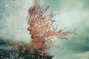 face trees plants nature digital art