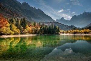 fall beach nature sunset water forest trees slovenia landscape lake mountains mist