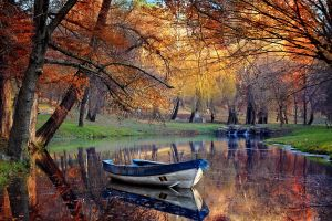 fall reflection water landscape pond nature trees park boat grass