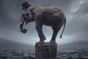 fantasy art elephant artwork