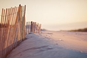 fence sand beach