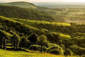 field england hills green forest nature sunlight landscape grass trees fence