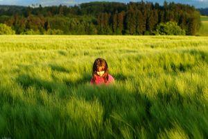 field outdoors children plants