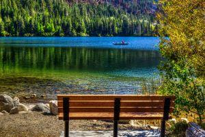 fishing lake beach bench nature