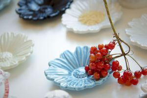 food red currant fruit saucer