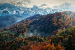 forest alps mountains sun rays mist snowy peak nature clouds trees fall morning landscape