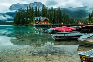 forest canoes hotel trees water nature lake mountains landscape banff national park boat mist