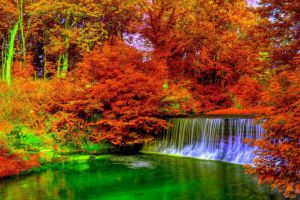 forest color correction nature waterfall