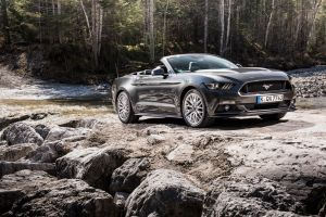 forest ford mustang car convertible