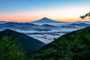 forest mount fuji mist nature landscape mountains japan