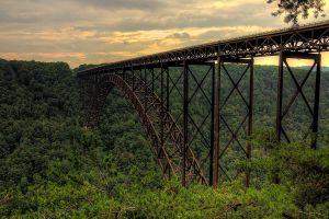 forest nature bridge gorge architecture