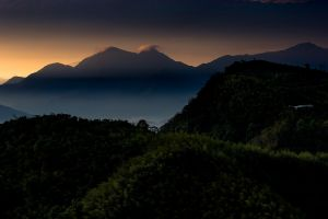 forest nature landscape calm mountains morning mist taiwan