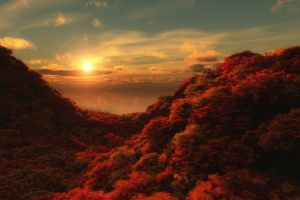 forest trees hills clouds sun fall nature sky landscape