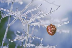 frost winter christmas ornaments  branch ice