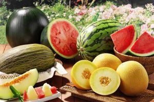 fruit dessert melons watermelons food