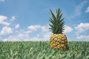 fruit grass pineapples food