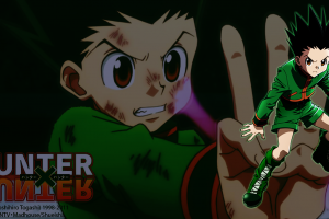 gon freecss  gon freecs hunter x hunter