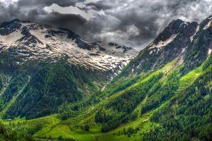 grass alps clouds nature switzerland green forest spring snowy peak landscape mountains
