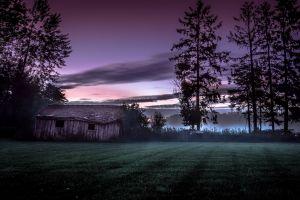 grass mist old cottage sunset norway clouds hut trees landscape nature