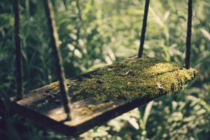 grass swings wood blurred photography sunlight depth of field