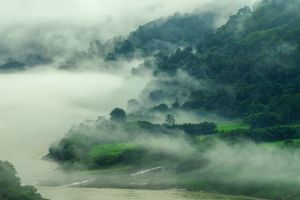 green grass india spring mountains landscape river forest nature mist