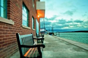 harbor lake bench