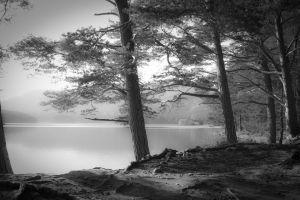hills landscape lake nature mist trees monochrome scotland