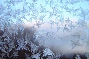 hoarfrost snowflakes ice digital art