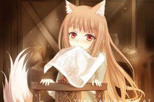 holo spice and wolf okamimimi