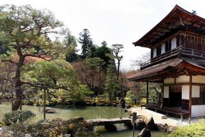 house pond trees asian architecture japanese garden garden