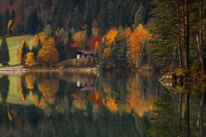 house water lake trees nature reflection landscape fall forest