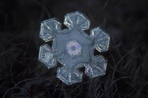 ice snowflakes macro