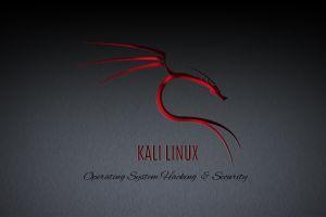 kali linux nethunter linux gnu kali linux