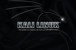 kali linux typography simple background