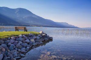 lake bench nature