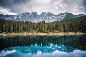 lake pine trees reflection nature landscape