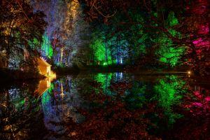 lake trees colorful