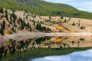 lake trees landscape